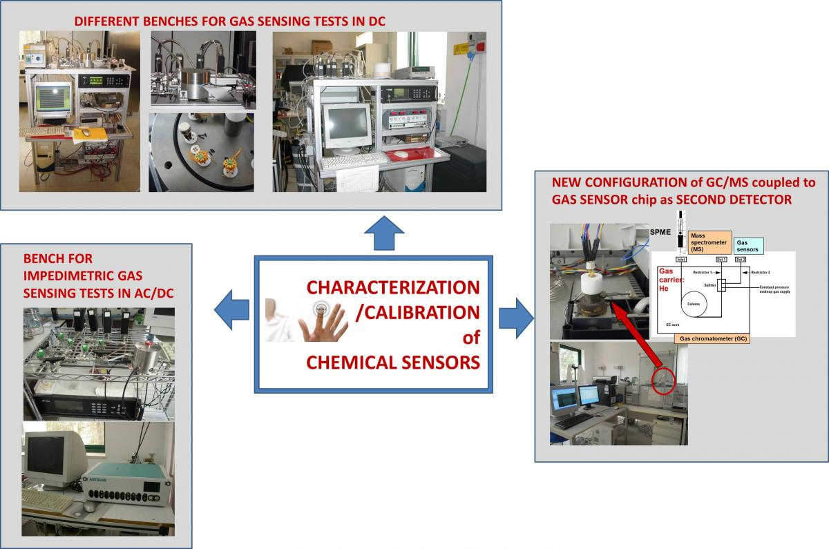 Chemical Sensors Based On Advanced Functional Materials